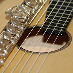 """Pachelbel """"Canon in D"""" Flute and 12 string Guitar performed live to a single stereo track"""