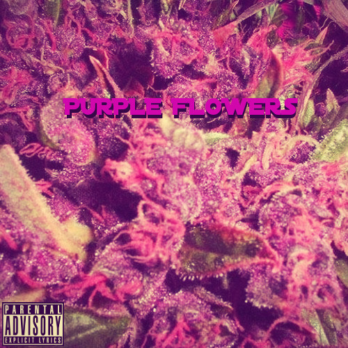 Superior Ingenuity-Purple Flowers (Purp Nebula)(KamGeta/Gavin Starski/Ku The Kid) ( Prod. by K-TWO )
