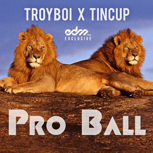 Pro Ball by TroyBoi x Tincup - EDM.com Exclusive