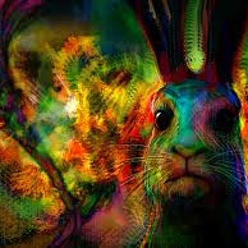 Rabbit-Hole  Unseen Dimensions