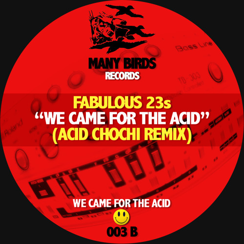 Fabulous 23s - We Came For The Acid (Acid Chochi Remix)