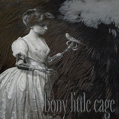 bony little cage (feat. The Sporz)