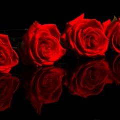14 Febrero San Valentin Nortena Mixx