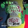 David Guetta ft. Skylar Grey vs. W&W - Shot me Bigfoot (Solla & Perru Edit)