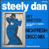 Steely Dan - Hey Nineteen (NICKFRESH DISCO MIX)