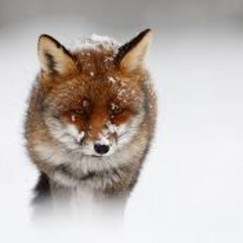 Deep Future - Limping Fox (Original Mix) FREE DOWNLOAD