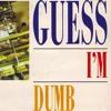 Guess I'm Dumb (Glen Campbell Cover)