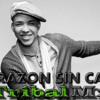Corazon Sin Cara - Prince Royce & Tribal Mx