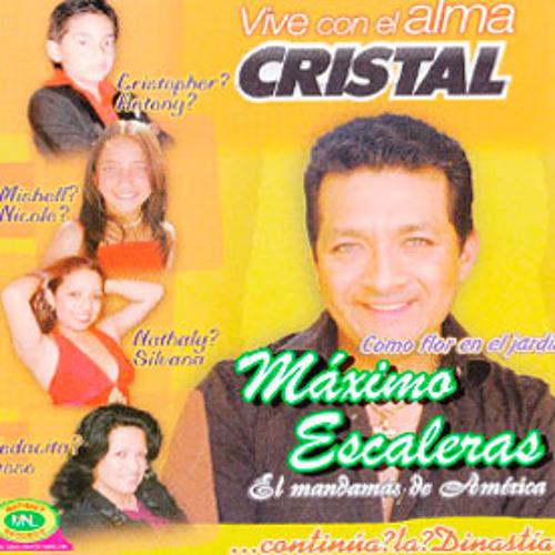 CD 22 - COMO FLOR EN EL JARDÍN