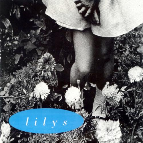Lilys - February Fourteenth