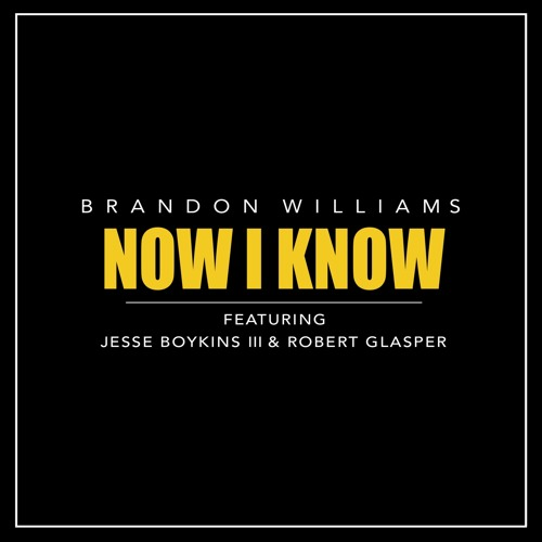 Brandon Williams - Now I Know feat. Jesse Boykins III & Robert Glasper