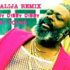 DJ Fresh VS Jay Fay Feat. Ms Dynamite  Dibby Dibby Dibby Funky Style  Dj Alija Remix