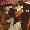 Handlebars Forever (Drake x Flobots)