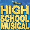 High School Musical - Start Of Something New (cover)