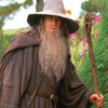 Lord of the Rings short tribute to Gandalf :(