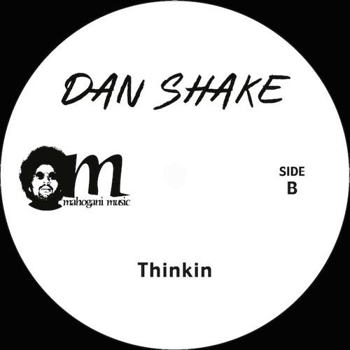 """DAN SHAKE 12"""" snippet"""