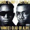 "Kool G Rap & DJ Polo   ""Streets Of New York"""