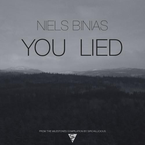 Niels Binias - You Lied