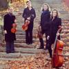 Telemann - Affetuoso from Sonata a duo violin, viola, e violono