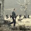 Skyfall - 007 -  Adele And Violin