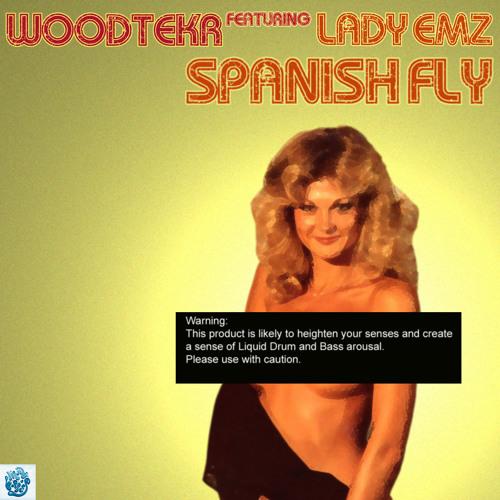 CATCH THE WIND - Woodtekr ft Lady Emz (Clip)- Liquid Boppers