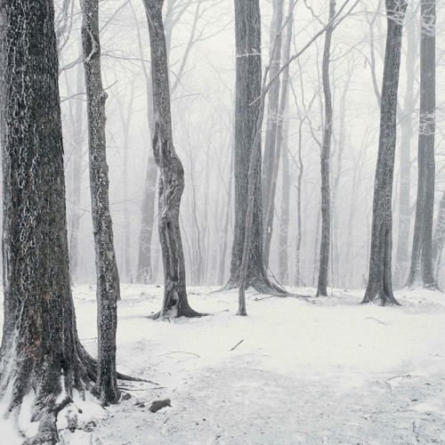 the winter road(Through the dim and through the snowstorm)