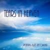 Tears In Heaven Solo / Improviso / Guitar Jam
