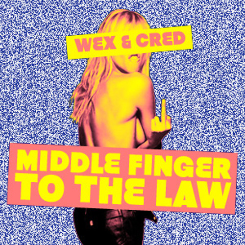 Middle Finger to the Law (Blink-182 x Jay-Z x Lil Wayne)