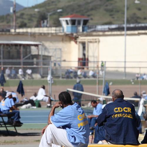 The hidden order of US prison gangs