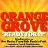 OrangeGrove(prod. by Bob Sinclar)- Ready For It (FUZZY HAIR REMIX)
