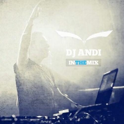 DJ Andi @ Vibe Fm 19.02.2014