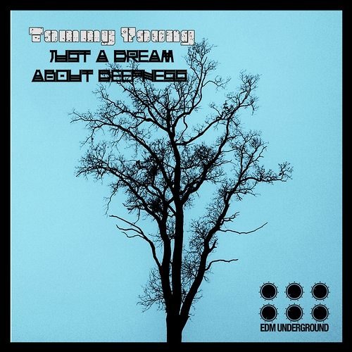 Tommy Young - Just A Dream About Deepness (Krisz Deak Remix) Out Now on Beatport