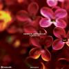 Hernan Betancur - For All5 (Jamie Power Remix)
