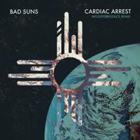 Bad Suns - Cardiac Arrest (WoodysProduce Remix)