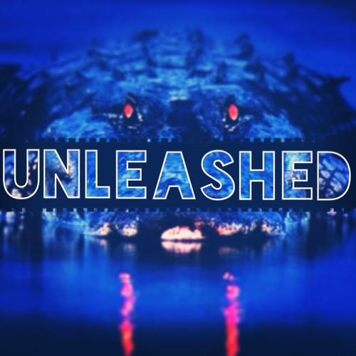 Unleashed (Original Mix)
