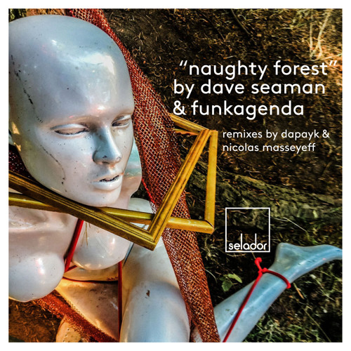 Dave Seaman & Funkagenda 'Naughty Forest' (Lo res teaser)