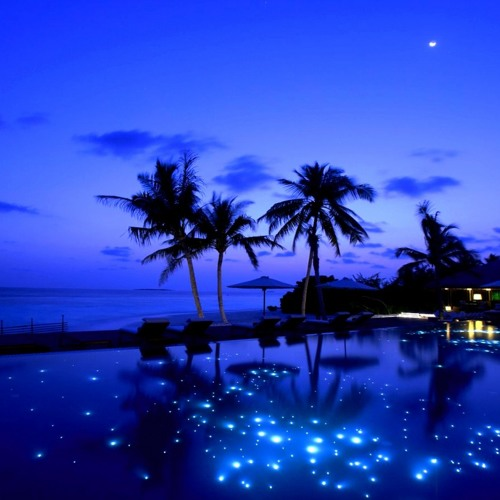 Ilan Bluestone vs Zedd ft. Hayley Williams - Spheres In The Night (David Valley Mashup) FREE DL