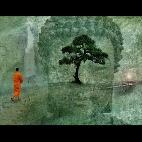 Niko Wilhelm - monk's walk
