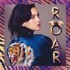 Katy Perry Vs. Cedric Gervaic & CID - Roar Never Come Closer ( Yogev Hillel Mash - Up) 320Kbps