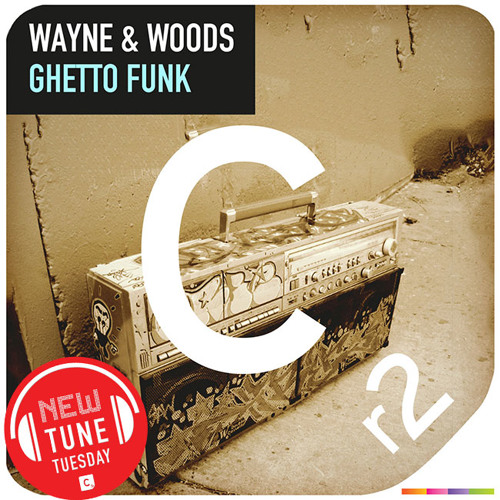 Wayne & Woods - Ghetto Funk [Preview]