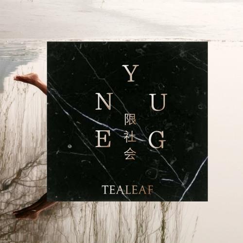 TEALEAF - ''Voices From War'' - (SHAM AN Remix)