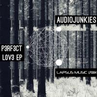 Audio Junkies - Pipeline
