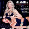 Cant Remember To Forget You --Shakira Ft. Rihanna --REMIX DJ WOON
