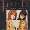 Eternal Flame ( The Bangles Cover Version )
