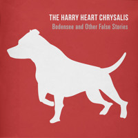 The Harry Heart Chrysalis - Coat of Arms