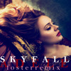 Skyfell - Adele x foster