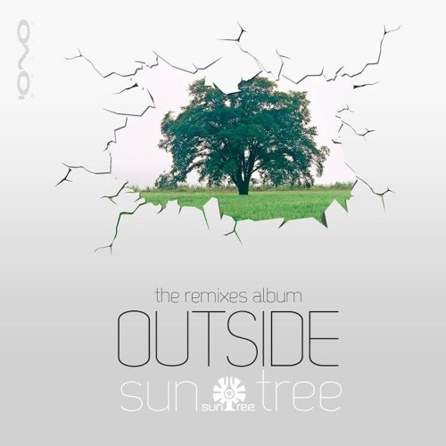 Suntree -Back To The Source (Egorythmia & Dual Resonance Remix) Sample