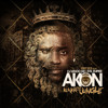 Akon - Salute 100 Ya'll (feat. Fabolous & Money J)