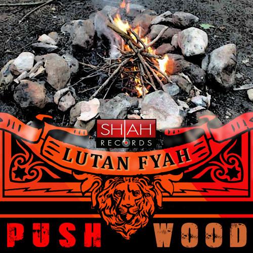 Lutan Fyah - Push Wood [Shiah Records 2014]