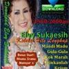 Elvy Sukaesih - Perih